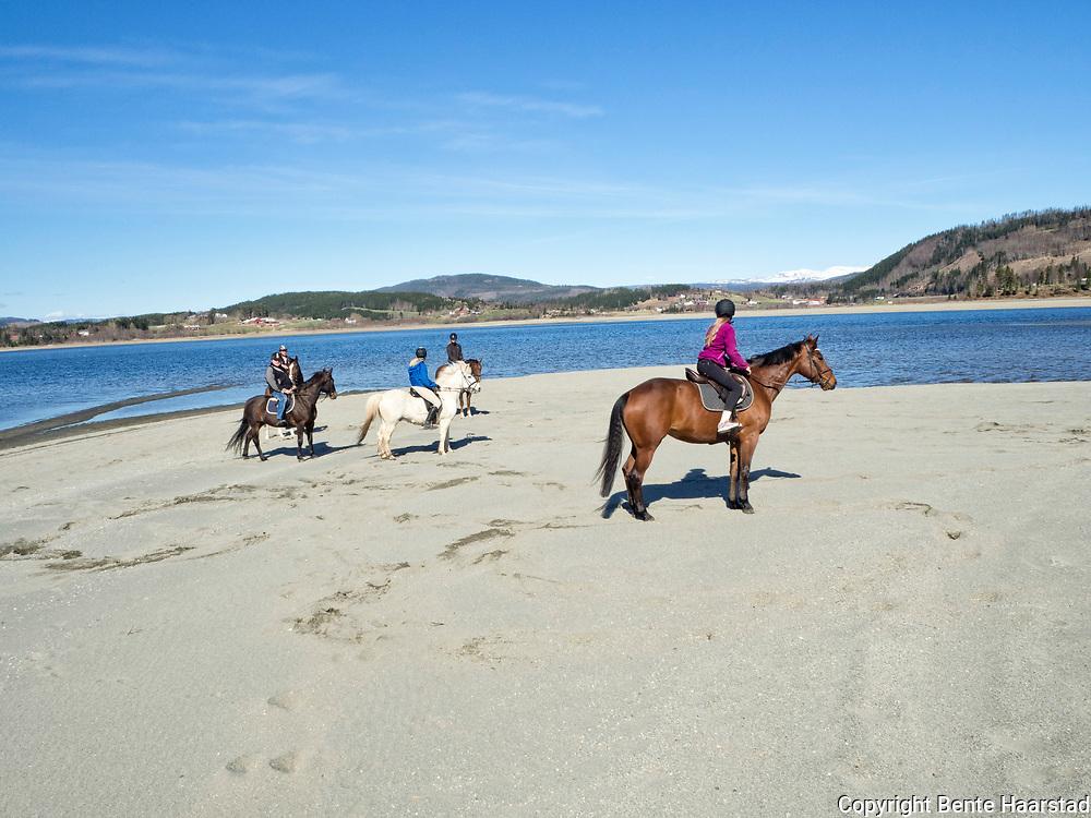 Ridetur med Stall B, ved Vikaengene, langs Selbusjøen i Selbu.