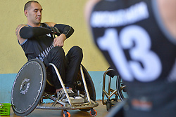 France V New Zealand, Behind the Scenes at the 2016 IWRF Rio Qualifiers, Paris, France
