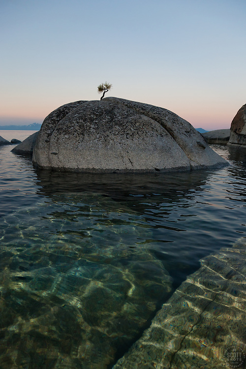 """Tahoe Boulders at Sunrise 13"" - These boulders and bonsai like pine tree were photographed at sunrise near Speedboat Beach, Lake Tahoe. Photographed from a kayak."