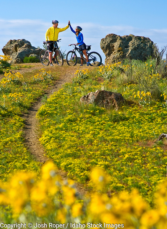 Idaho, near Boise. A couple high fives and mountain bikes among wildflowers in the foothills on a beautiful spring day.