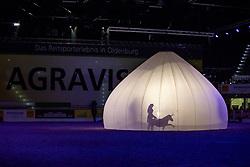 Schattenspieler<br /> Oldenburg - AGRAVIS-Cup 2018<br /> Reiten unter Lichtkugel<br /> Gala-Abend<br /> 03. November 2018<br /> © www.sportfotos-lafrentz.de/Stefan Lafrentz