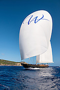 Wisp sailing in the St. Barth's Bucket Regatta.