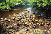 Hickory Run State Park, Carbon Co., NE PA, Mud Run, mountain stream