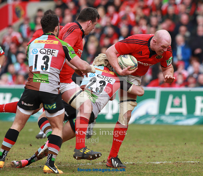 Picture by Paul Terry/Focus Images Ltd +44 7545 642257.07/04/2013.Paul O'Connel ( R ) of Munster attempts to break free from the challenge of Matt Hopper ( C ) of Harlequins during the Heineken Cup match at Twickenham Stoop , London.