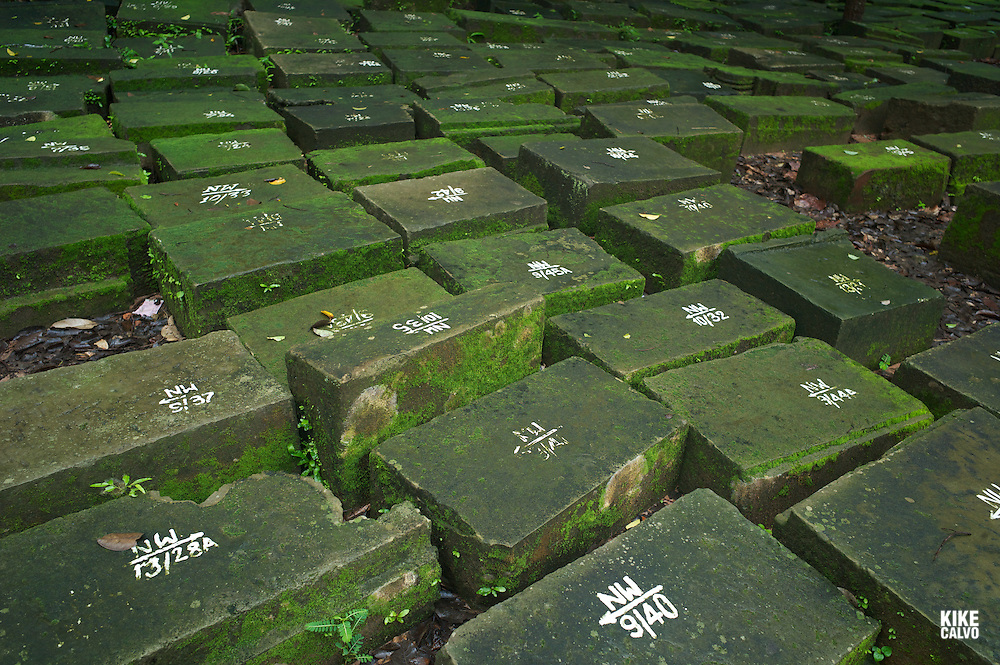 Marked stones in a restoration projects at the Ancient ruins of Ta Prohm Temple, Angkor, Cambodia.