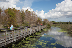 two men on a walkway in Green Cay Wetlands, Florida