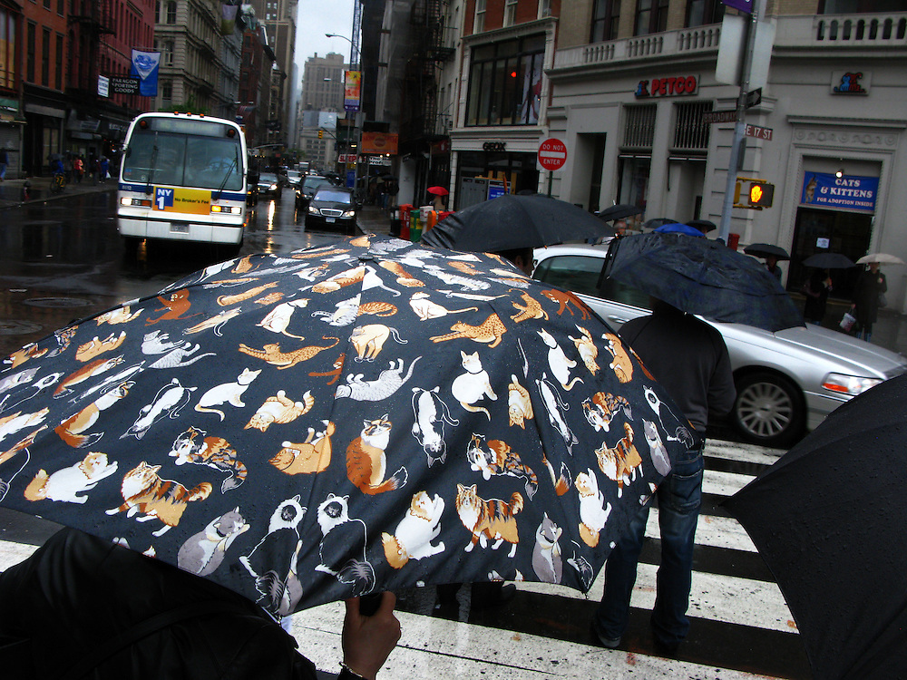 New York City USA Schirm Regenschirm Wetter Regen Schirm  Umbrella Parasol..From the series 'Umbrellas' © Stefan Falke.
