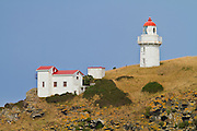 Taiaroa Lighthouse, Otago Peninsula
