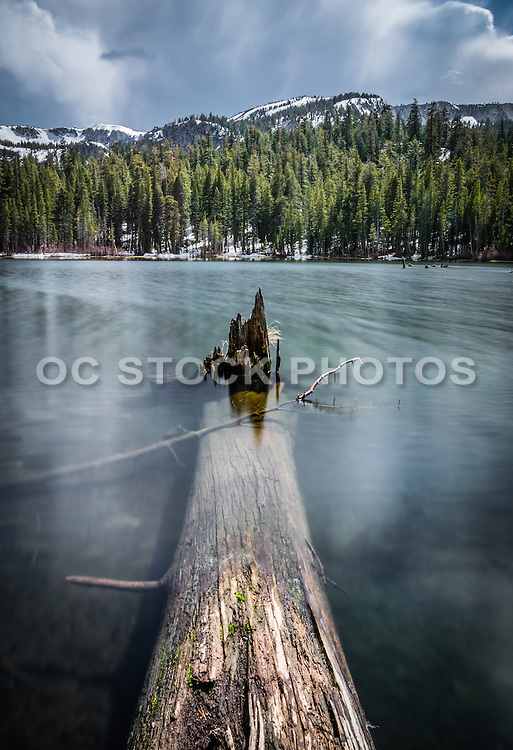 Twin Lakes California