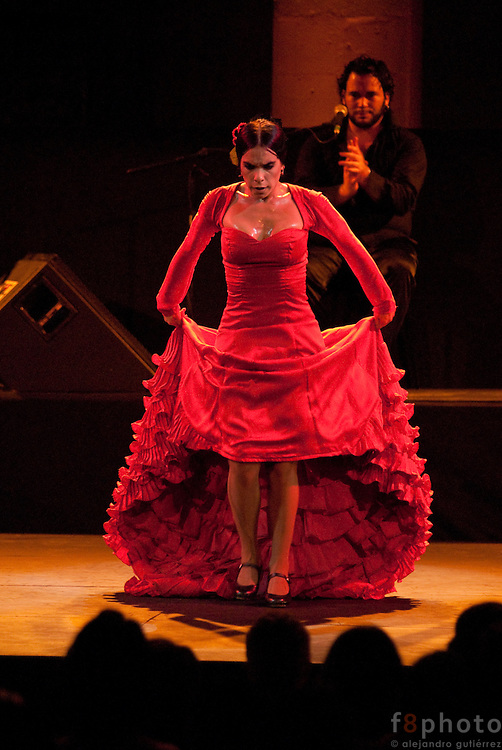 "The dancer Maria Juncal during the Spanish Dance Gala ""Jaleo al Corazón"" in the Second International Dance Festival Ibérica Contemporánea, Querétaro, México,2009."