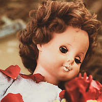 doll lying in a wood covered in red petals