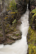 Baring Creek flows through a very narrow gorge, called Sunrift Gorge, in Glacier National Park, Montana. The gorge has very smooth, straight sides because it eroded along vertical fractures in the rock known as joints. Sunrift Gorge began to form after large Pleistocene glaciers began to retreat from that area and with a maximum cut down rate of 0.003 inch per year, this gorge is the result of several millions of years of erosion.