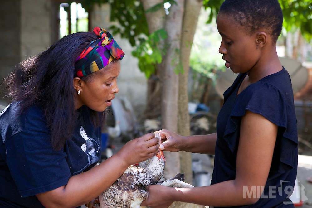 Haika Mshomi teaching one of her daughters how to look after ducks.<br /> <br /> Haika set up and now runs a poultry business selling chickens, their eggs and also ducks, Mail Mojo Soweto, Tanzania.<br /> <br /> She attended MKUBWA enterprise training run by the Tanzania Gatsby Trust in partnership with The Cherie Blair Foundation for Women.