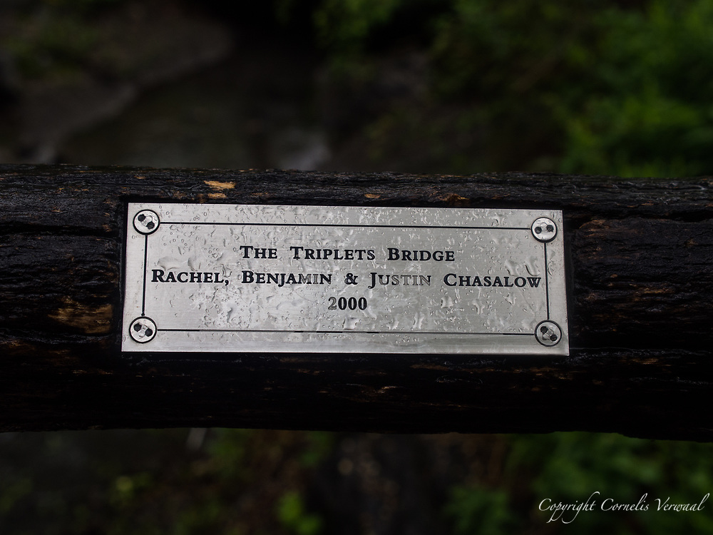 The Triplets Bridge in Central Park.