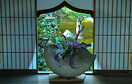 """Hoshun-in Ikebana and Shoji at Daitokuji Temple. Ikebana, meaning arranged flower is the Japanese art of flower arrangement also known as kado - the """"way of flowers"""".  More than simply putting poseys in a container, ikebana is a disciplined art form in which nature and humanity are brought together. Contrary to the idea of floral arrangement as a multicolored arrangement of blooms, ikebana emphasizes other areas of the plant, such as its stems and leaves, and draws emphasis towards shape and form."""