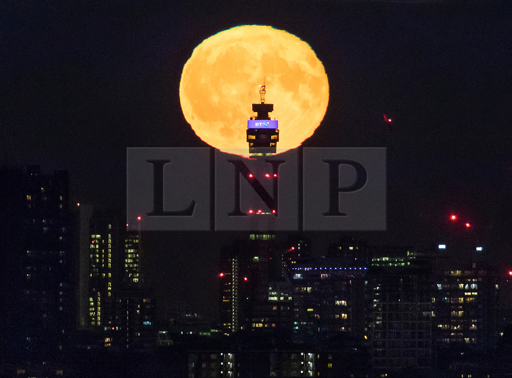 © Licensed to London News Pictures. 25/09/2018. London, UK. A full Harvest moon rises behind the BT Tower in central London. It is named the Harvest Moon as it is the nearest full moon to the autumnal equinox. Photo credit: Peter Macdiarmid/LNP