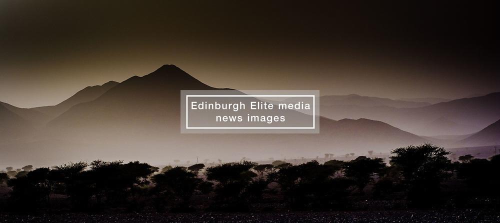 Desert landscape in evening light, southern Morocco<br /> <br /> (c) Andrew Wilson | Edinburgh Elite media