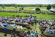 April 28, 2018: Queen's Cup Steeplechase. Horses take the water jump during the Queen's Cup steeplechase's 4th race, the Maiden Timber race on the George A. Strawbridge, Sr. Memorial Timber Course.