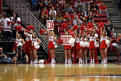 14 November 2016:  cheerleaders during an NCAA  mens basketball game between the Indiana Purdue Fort Wayne Mastodons the Illinois State Redbirds in Redbird Arena, Normal IL