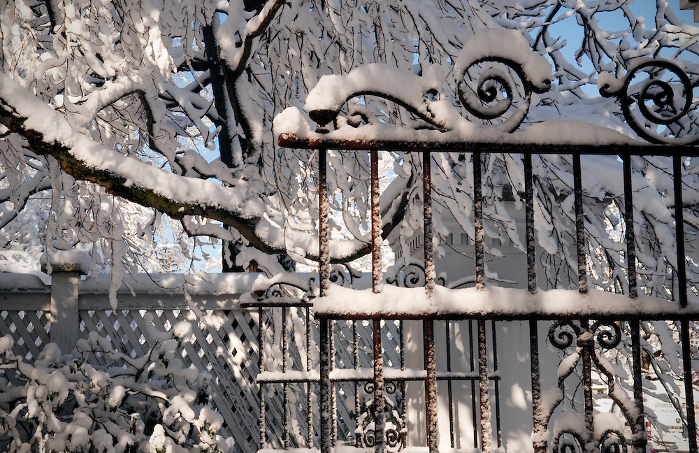 New snow on an old gate.