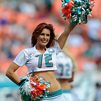 Nov.16, 2012;  Miami, FL, USA; Miami Dolphins cheerleader performs before a game against the Jacksonville Jaguars at Sun Life Stadium. The Dolphins won 24-3. Mandatory Credit: Steve Mitchell-USA TODAY Sports