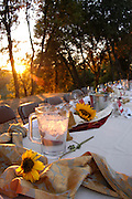 Outdoor table set for a fall harvest dinner in the Sierra Nevada foothills.