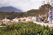 ESP, Spain, the Canary Islands, island of La Palma, Tazacorte at the west coast, banana plantation.<br /> <br /> ESP, Spanien, Kanarische Inseln, Insel La Palma, Tazacorte an der Westkueste, Bananenanbau.