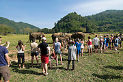 "Sangduen ""Lek"" Chailert with visitors at the Elephant Nature Park near Chiang Mai, Thailand.  Sangduen ""Lek"" Chailert founded the park as a sanctuary and rescue centre for elephants.  The park currently has 32 elephants sponsored and supported by volunteers from all over the world."