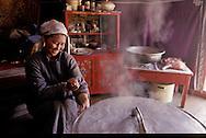 Mongolia. a woman preparing a traditional meal in a yurt in Sereglen  /  préparation du repas dans une famille à Sereglen