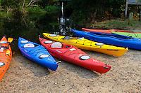 Adventure, kayaks beached on the shoreline Alligator River, North Carolina, USA