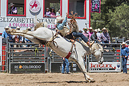 Colt Hokana rides Summit Pro Rodeo's 849 Inside Out in the bareback riding during the first performance at the Elizabeth Stampede on Saturday, June 2, 2018.