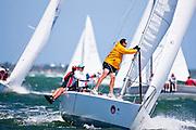 Scout's Pride, J24 Class, racing in the 2010 Bacardi Miami Sailing Week regatta.