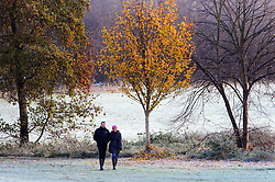 © Licensed to London News Pictures. 26/11/2016<br /> A very cold and frosty morning in the South East.<br /> People enjoying a cold frosty morning at Footscray Meadows,Sidcup,Kent.<br /> Photo credit :Grant Falvey/LNP