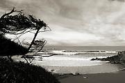 Boiler Bay, Oregon Coast