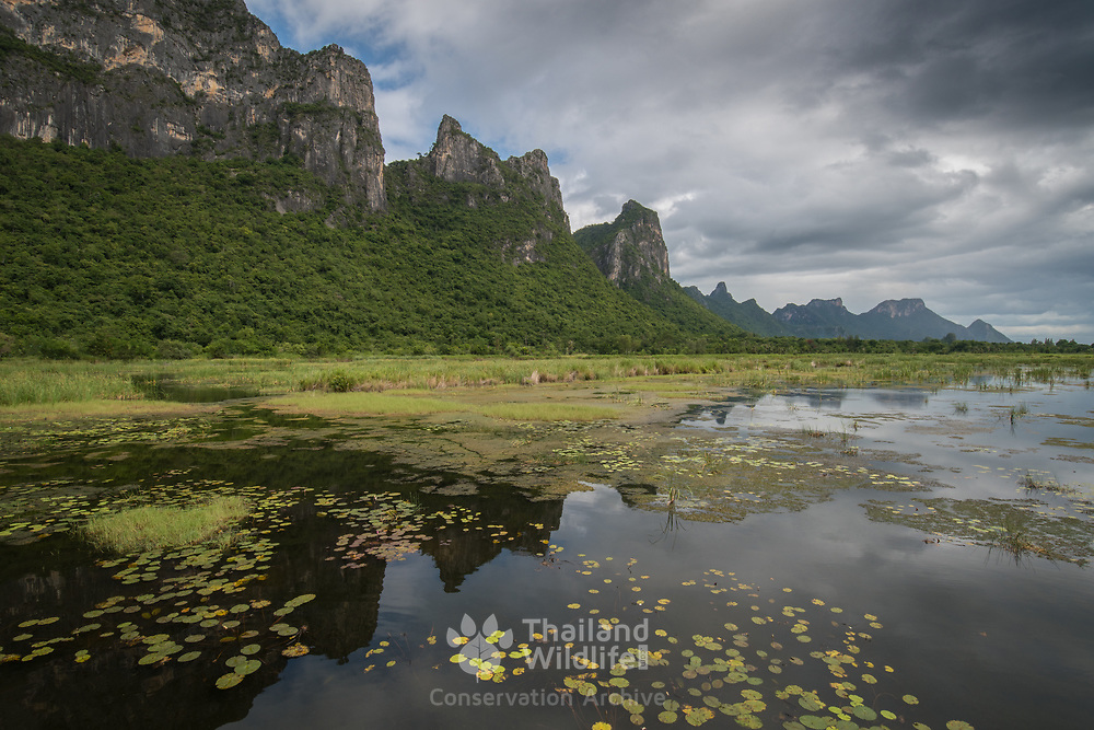 """Khao Sam Roi Yot National Park, Thailand. Khao Sam Roi Yot means """"The mountain with three hundred peaks"""" and refers to a series of limestone hills along the Gulf of Thailand"""