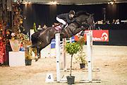 Wilton Porter - Delinquent JX<br /> Jumping de Achterhoek 2017<br /> © DigiShots