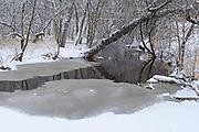 Early winter in the Seine River Forest.<br />Winnipeg<br />Manitoba<br />Canada