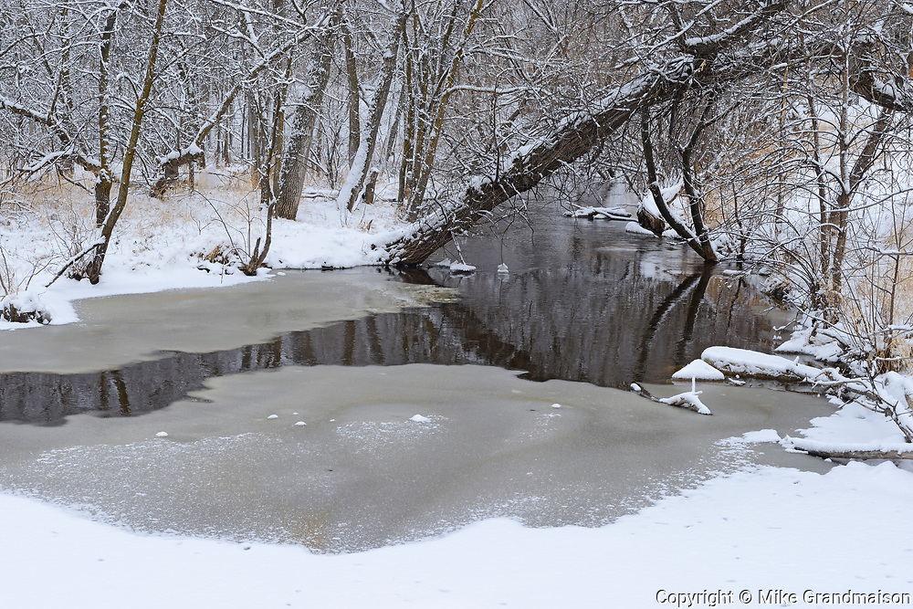 Early winter in the Seine River Forest.<br />