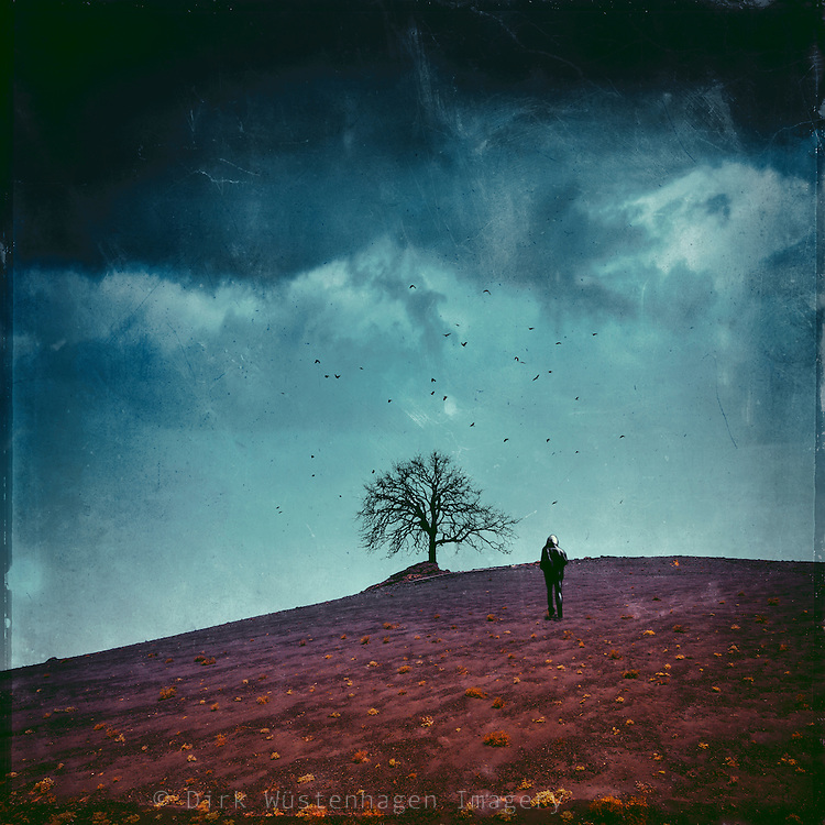 surreal volcanic landscape with wanderer and a lone tree<br /> <br /> Licenses: http://www.trevillion.com/search/preview/man-on-hill-with-storm-clouds/0_00202126.html