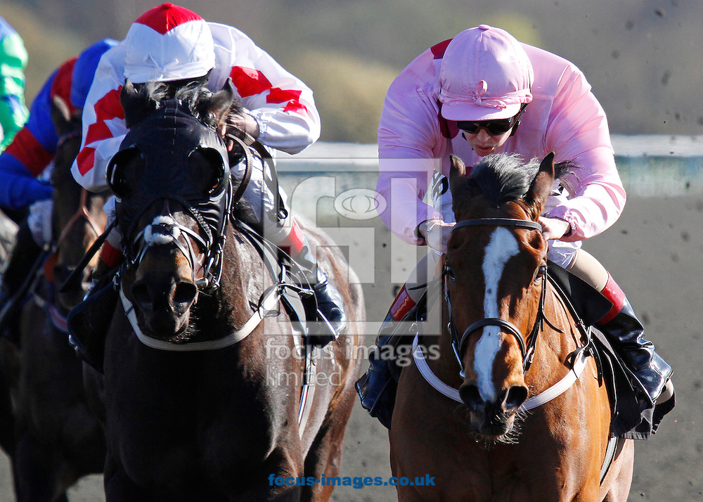 Picture by John Hoy/Focus Images Ltd. 07583422396.26/03/12.Cathy Gannon riding Strictly Pink(pink colours) wins her first race since returning from injury at Lingfield Park Race Course, Surrey.