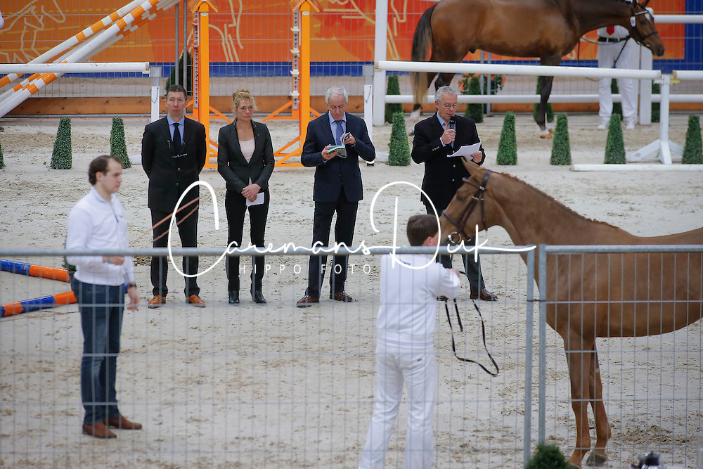 Jury jumping<br /> KWPN Hengstenkeuring - 's Hertogenbosch 2013<br /> &copy; Dirk Caremans