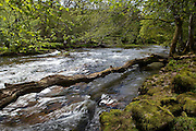 Dappled sun light and the rushing water of the River Usk in Wales.