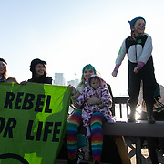 Thousands of Extinction Rebellion activists took over 5 bridges in Central London and blocked them for the day, November 17 2018, Central London, United Kingdom. Lambeth Bridge; childrena nd their mothers rebel and cheer on the crownd sitting in the road. Around 11am people on all bridges sat down in the road and blocked traffic from coming through and stayed till late afternoon. The actvists believe that the government is not doing enough to avoid catastrophic climate change and they demand the government take radical action to save future generations and the planet. Many are willing to be arrested peacefully protesting and up to 80 were arrested on the day. Extinction Rebellion is a grass root climate change group started in 2018 and has gained a huge following of people commited to peaceful protests and who ready to be arrested. Their major concern is that the world is facing catastropohic climate change and they want the British government to act now to save future generations.