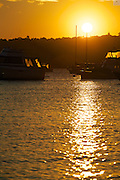 Boats on moorings bask in the glow of an Indian Summer evening at Sydney's Watson's Bay