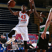 Westchester Knicks Forward THANASIS ANTETOKOUNMPO (43) drives towards the basket as Delaware 87ers Forward SAM THOMPSON (12) defends in the first half of a NBA D-league regular season finale between the Delaware 87ers and the Westchester Knicks Friday, Apr. 01, 2016, at The Bob Carpenter Sports Convocation Center in Newark, DEL.<br /> <br /> The Westchester Knicks will open up post season play verses the sioux skyforce Tuesday, Apr 5, 2016, at The Westchester County Center in White Plains, NY.