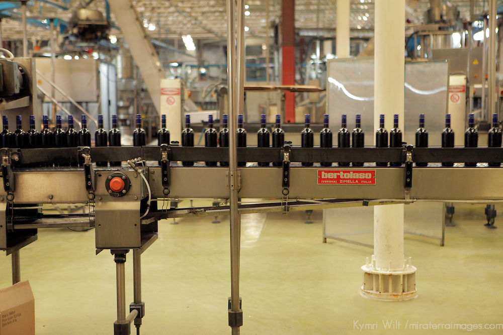 South America, Chile, Santiago. Factory Bottling Plant at Santa Rita Winery.