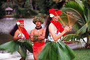 Hula, Kauai, Hawaii