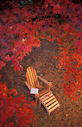 Adirondack chair surrounded by fall leaves