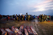Crew and community members butcher the first and second whales caught in this year's fall whaling season into the night on September 22, 2014 in Barrow, AK.