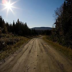 A logging road near Big Brook Bog in Pittsburg, New Hampshire.
